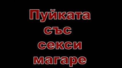 Бюрм ска _ Firom ска игра със сръбско магаре