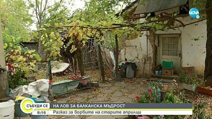 На лов за балканска мъдрост: Разказ за борбите на старите априлци