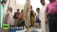Пакистан: Подозира се, че свинска мас се изпозва за направата на сладолед в Лахор