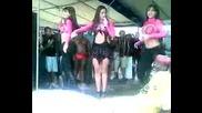 Бразилски Танц Който Ще Задмине Ламбадата