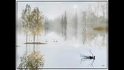 Art of photography - Igor Zenin