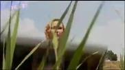 Валдес-рибна фиеста