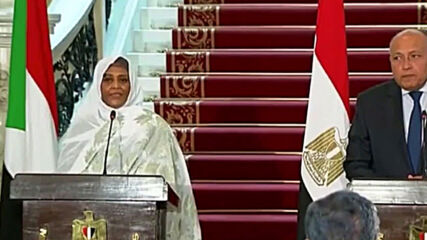 Egypt: Cairo, Khartoum consider Ethiopia's filling of Renaissance Dam 'direct threat' to their water security