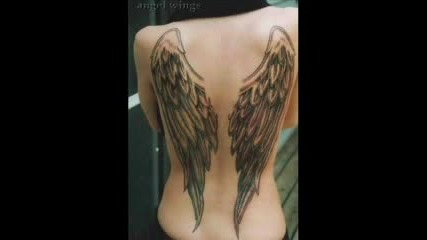 Lisaya Vs. Petersen - Wings