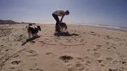 Куче инвалид се радва на разходка по морския бряг