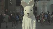 Този заек търси отмъщение за неговите братя и сестри