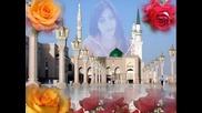 ismail molla