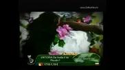 Каролина - Умирам Без Тебе [ Официално Видео ]