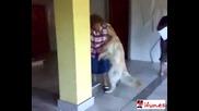Куче се опитва да дърта баба (смях)