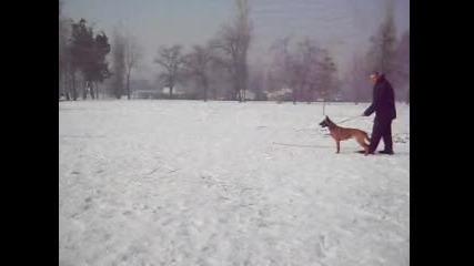 Обучение на куче защита