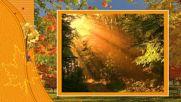 Golden Autumn! ... (