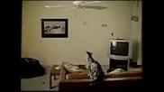 Любопитството Убило Котката