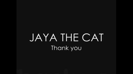 Jaya the Cat - Thank you