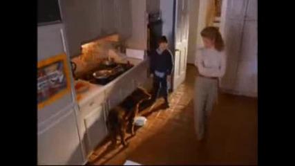 Флюк - Историята на едно куче,  което преди е бил човек