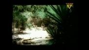 Paul Van Dyk - For An Angel (High Quality)