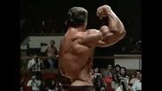 Arnold Schwarzenegger, Terminator song