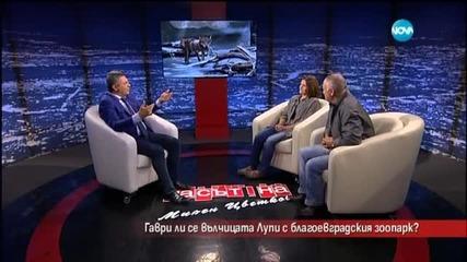 Гаври ли се вълчицата Лупи с Благоевградския зоопарк?