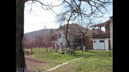 Old Bistrilitsa Houses