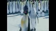 Happy Feet - Весели Крачета - 2