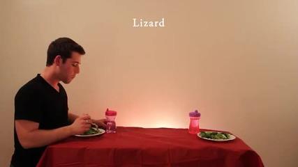 Kак животните ядат храната си