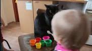 Малко момиченце дава на коте да яде