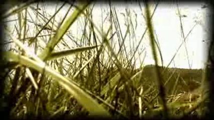 Kroda - Ghosts of Birds