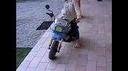 Малка Електрическа Yamaha