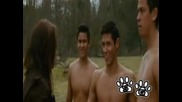 Jacob Black & Paul - Terrible Thunder Wolves