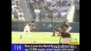 Бейсболист осакатява птица !