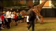 Динозaвър напада деца-веселба