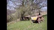 zayo vs magaer bik