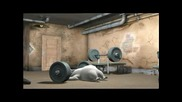 Мечката Бернард - На Тренировки