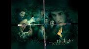 Twilight 4.wmv