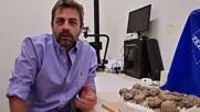 Discovery of fossilised dinosaur skeletons, eggs in Patagonia possible proof of herd behaviour