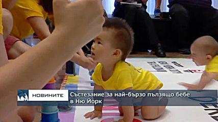 Надпревара за най-бързо пълзящо бебе се проведе в Ню Йорк