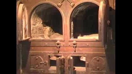 Кадри От Музея - Концлагер В Дахау