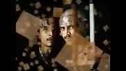 Don Omar - Provocandome (ms - 13 Gang)