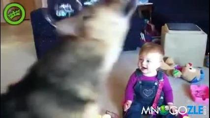 Бебок се съсипва от смях на куче