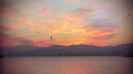 Sean Finn feat. Tinka - Summer Days (official Video)