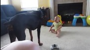 Бебче се радва на доберман!