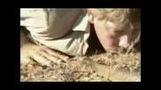 Десетте Най - Отровни Змии(част 3 - Та)