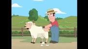 Стригане на Овце... :)