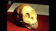 Топ 10 археологически открития