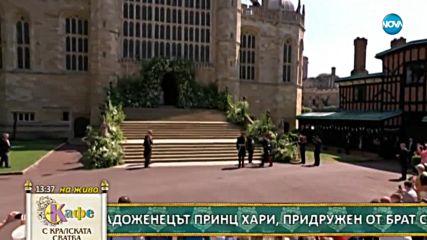 НА ЖИВО: Принцовете Хари и Уилям пристигнаха в Уиндзор