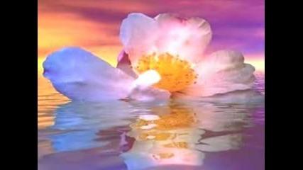 Sacred Journey 2 - Kitaro - 1980