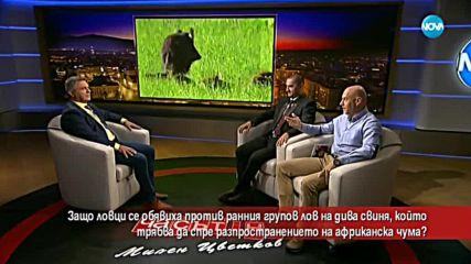 Защо ловци се обявиха против ранния групов лов на дива свиня?
