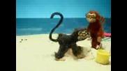 Лудите маймуни секс издание