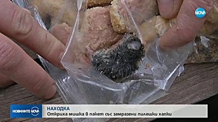 Откриха мишка в замразени пилешки хапки