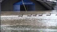 Речно наводнение в Ханибал , Мисури 8.7.2014