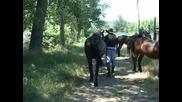 Carobnjaci - Kauboj iz Krajne